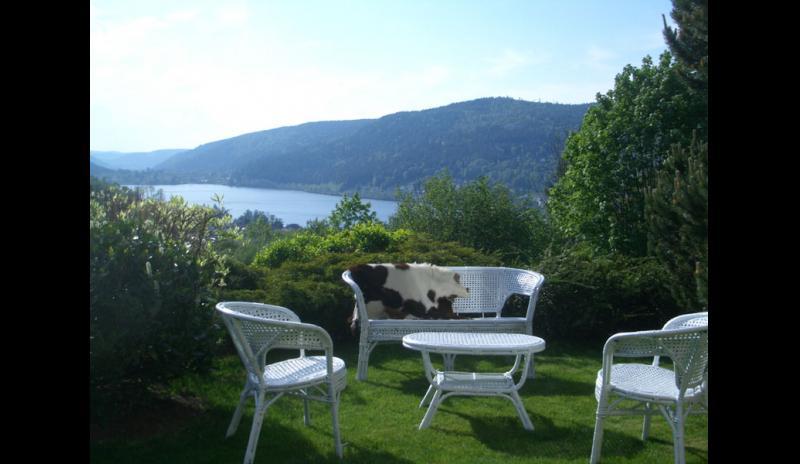 location-vacances-chalet-gerardmer-vosges-gi002-235458
